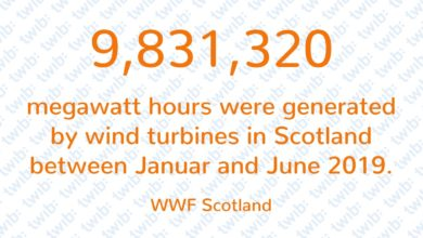 Photo of 9,831,320 megawatt hours were generated by wind turbines in Scotland between January and June 2019.