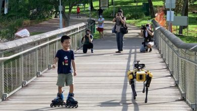 Photo of Meet Spot: The Robotic Dog That Reminds Us to Maintain Social Distancing
