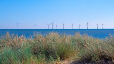 Photo of Orders for Offshore Wind Skyrocket