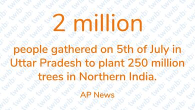 Photo of 2 million people gathered on 5th of July in Uttar Pradesh to plant 250 million trees in Northern India.