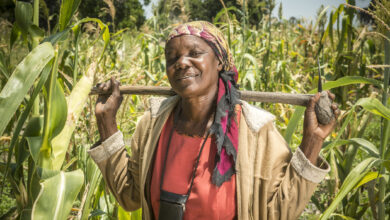 Photo of Big Break for Farming Women as President Gives Them Right to Own Land