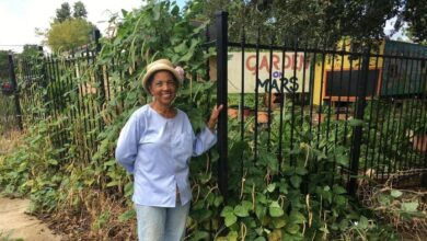 Photo of From the Ruins of Katrina, New Orleans Turns Over a New Leaf, One Garden at a Time
