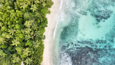 Photo of Seychelles Made a Deal for Nature: You Pay our Debts, We'll Protect the Ocean