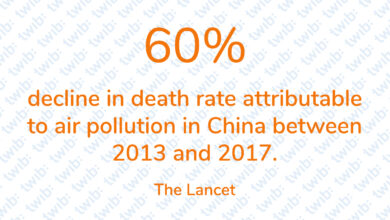 Photo of 60% decline in death rate attributable to air pollution in China between 2013 and 2017.
