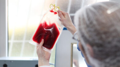 Photo of Making Human Blood Cells Has Become Easier, Faster and Cheaper