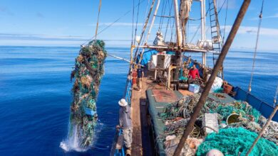 Photo of Record Amount of Plastic Recovered from the Great Pacific Garbage Patch