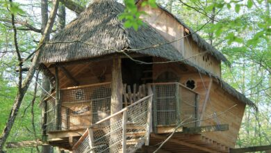 Photo of Treehouse Vacation Makes Social Distancing very, very Easy