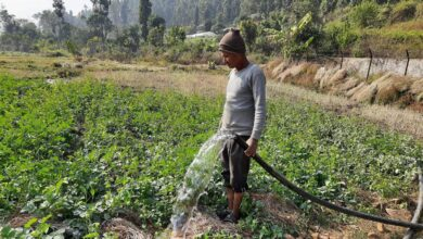 Photo of Smart Water Irrigation Creates Happy Farmers in 116 Villages